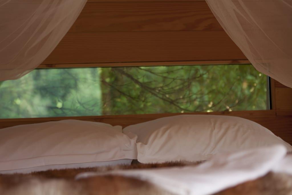 Cabane perchée dans le Loiret