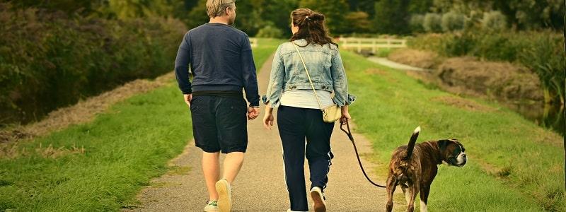 week-end en amoureux avec son chien